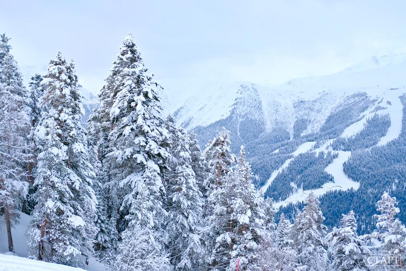 Тарифы на скипассы на курорте Архыз в сезоне 2019/2020