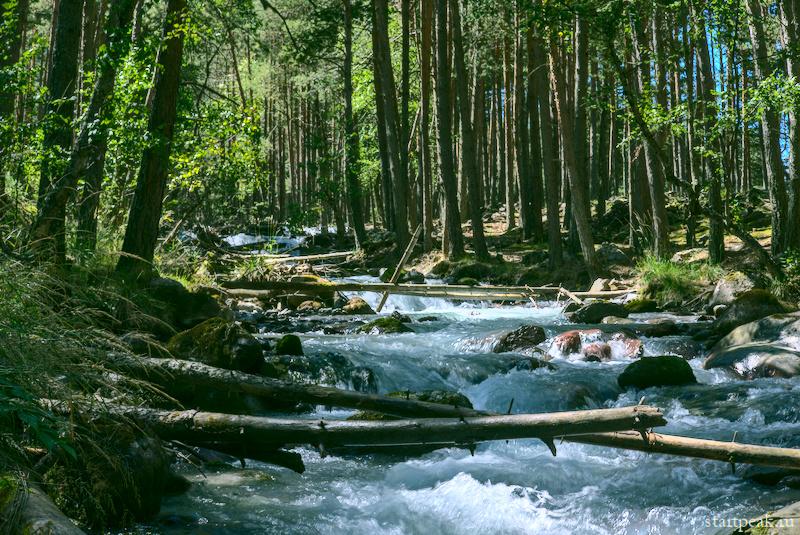 Горный ручей в лесу Аксаут
